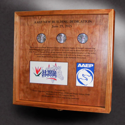 cherry wood shadow box for silver coins