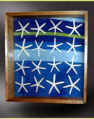 walnut shadow box for starfish