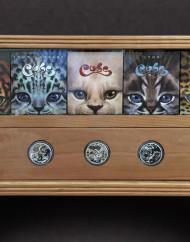 cat-coins